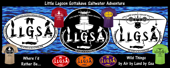 LLGSA Little Lagoon Gottahave Saltwater Adventure